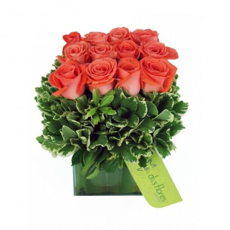 Jardim de Rosas Rosa