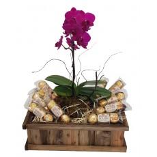Cesta de Chocolates e Orquídea